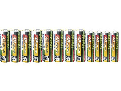 Conrad energy Oplaadbare batterijenset AAA, AA, 12 stuks