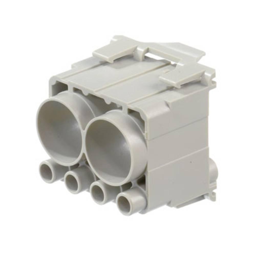 Industristikforbindelse Amphenol C146 Weidmüller HDC CM BUS M2 1 stk