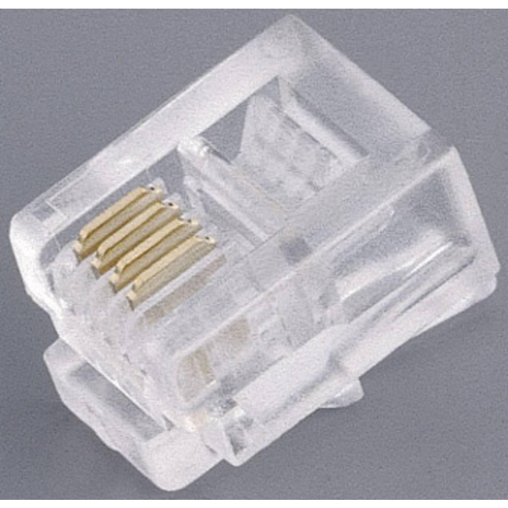 RJ11 Stik, lige BKL Electronic 142142 CAT 3 Transparent 1 stk
