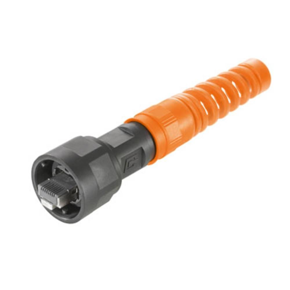 Sensor-/Aktor-datastikforbinder Weidmüller IE-PS-V01P-RJ45-FH-BP 10 stk