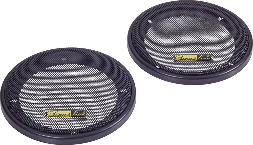 Speaker grille for 10 iL