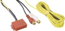 Line out-adapter ISO 10-polet på 4 x Cinch AIV 1107017 1 stk