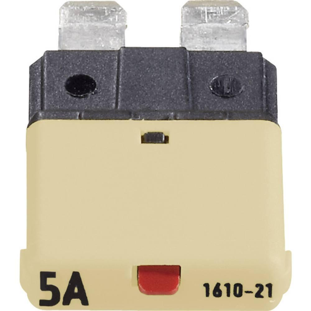 Sikringsautomat Standard Fladsikring 5 A Beige FLACHSICHERUNGS-AUTOMAT 5 A CE1610-21-5A 1 stk