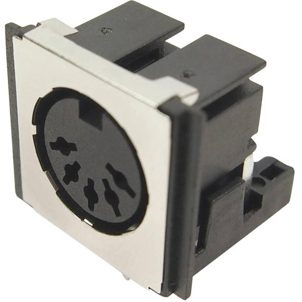 DIN-okrogli vtični konektor za vtičnico, vgraden horizontalen število polov: 5 črne barve Cliff FM6725 1 kos