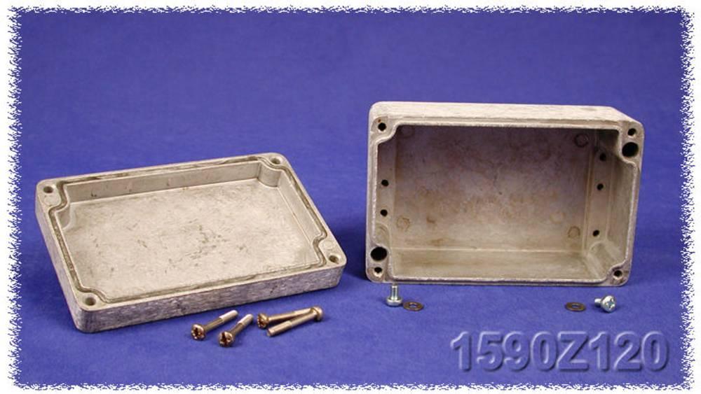 Endeplade Hammond Electronics 1590Z166PL Stålplade Natur 1 stk