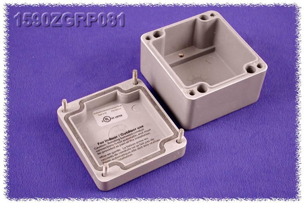 Indlægsplade Hammond Electronics 1590ZGRP082PL Stålplade Natur 1 stk