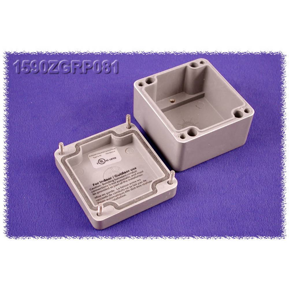 Indlægsplade Hammond Electronics 1590ZGRP081PL Stålplade Natur 1 stk