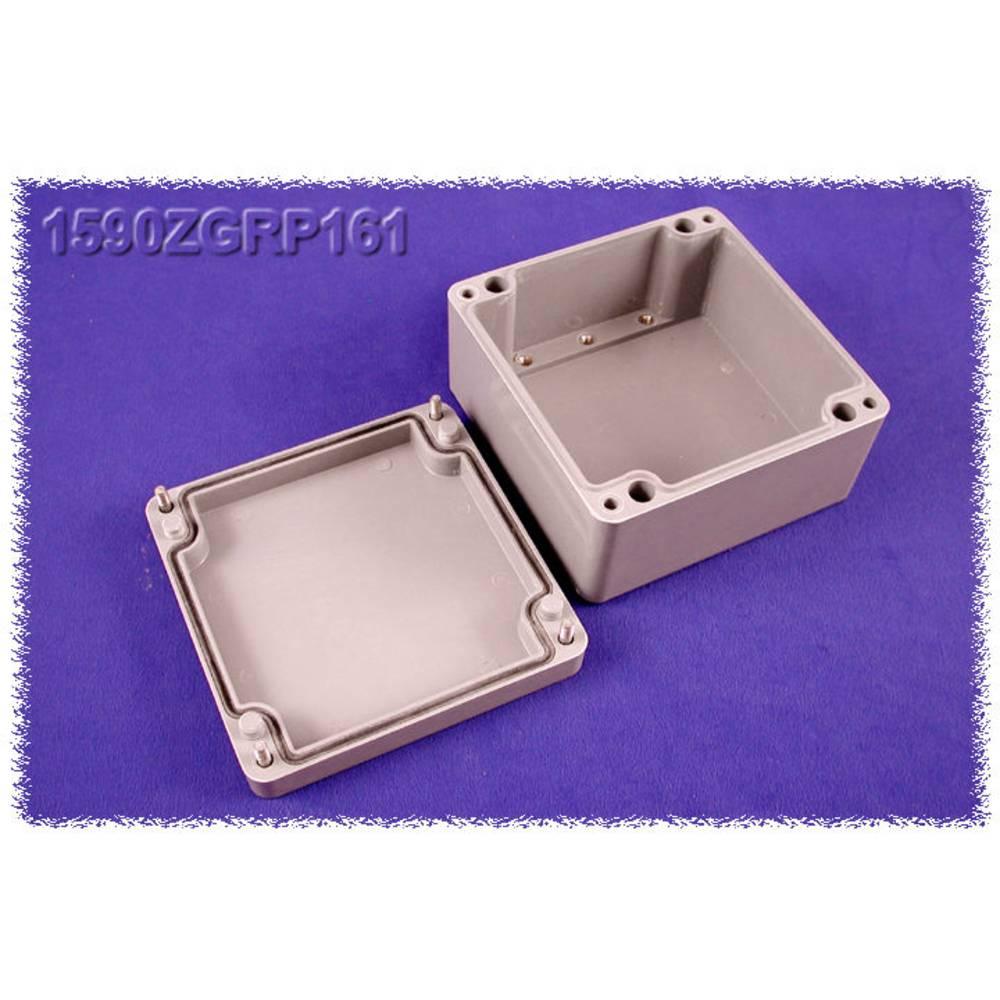 Indlægsplade Hammond Electronics 1590ZGRP161PL Stålplade Natur 1 stk