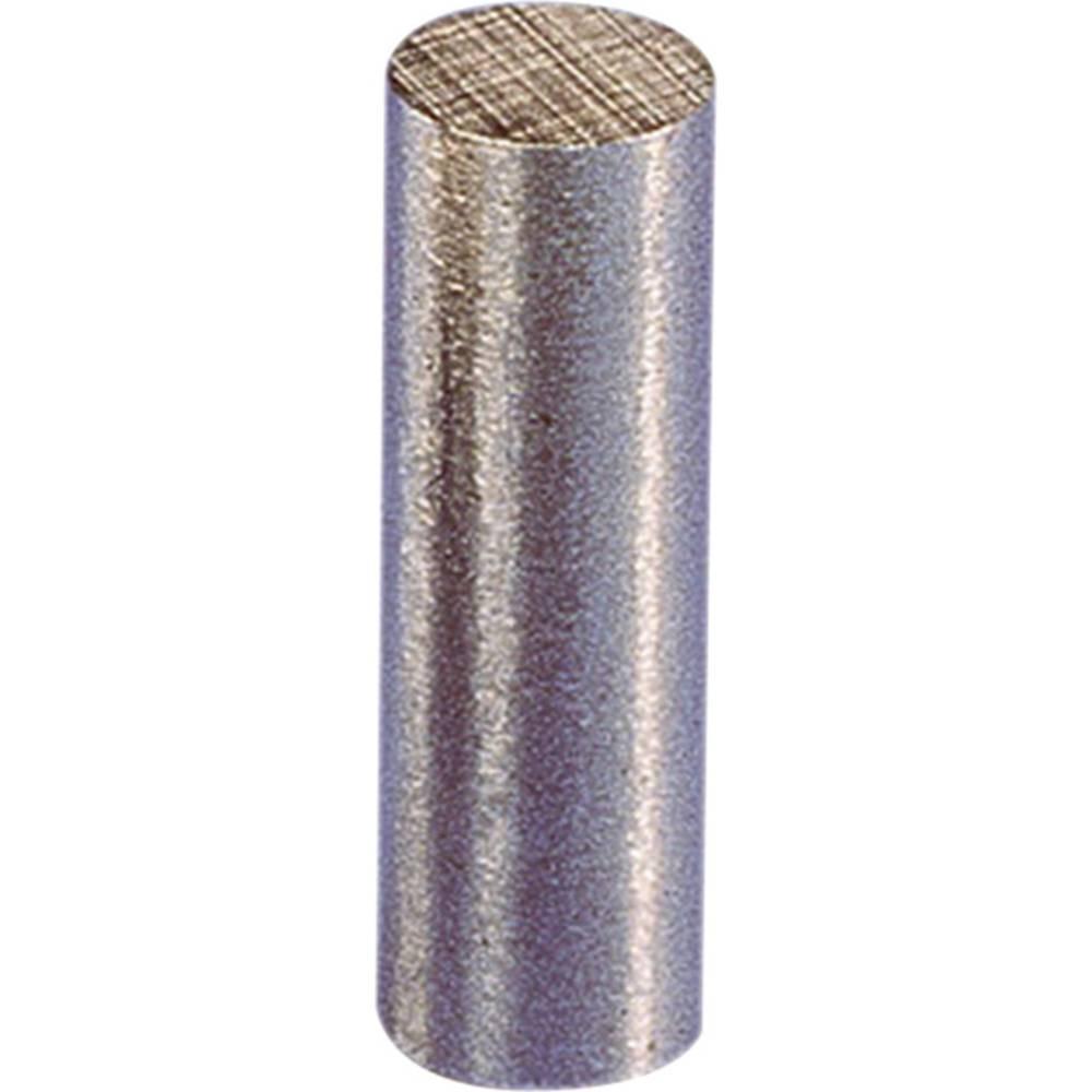 Magnet s trajno močjo