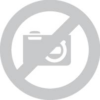 Avery L6011-20 Extra-Strong Adhesive Silver Heavy Duty Labels 27 Labels Per A4 Sheet