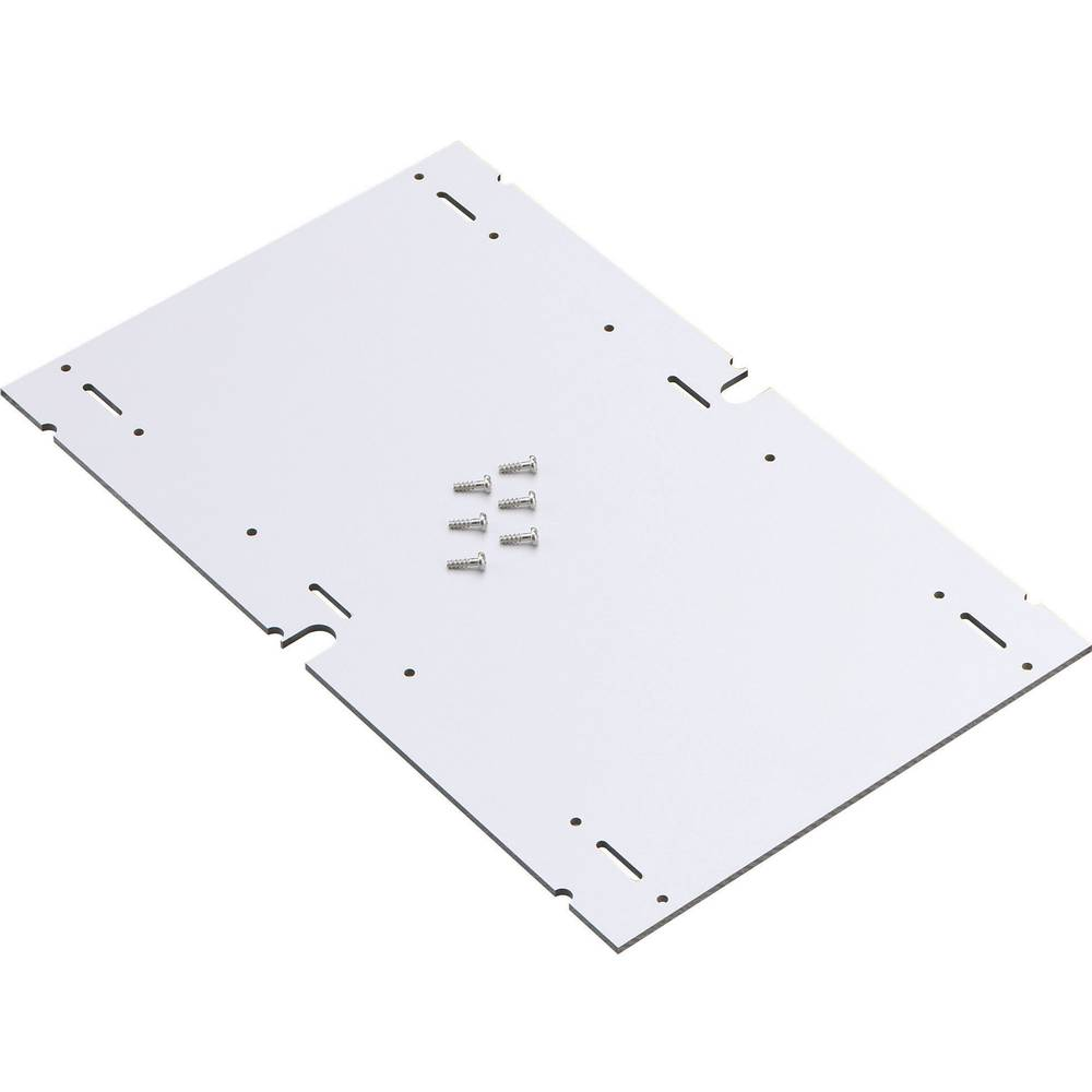 Spelsberg 79500201 AK MPI 2 AK Mounting Plate For Plastic Casing (L x W x H) 240 x 240 x 4 mm Insulator Compatible with AKL/AKi