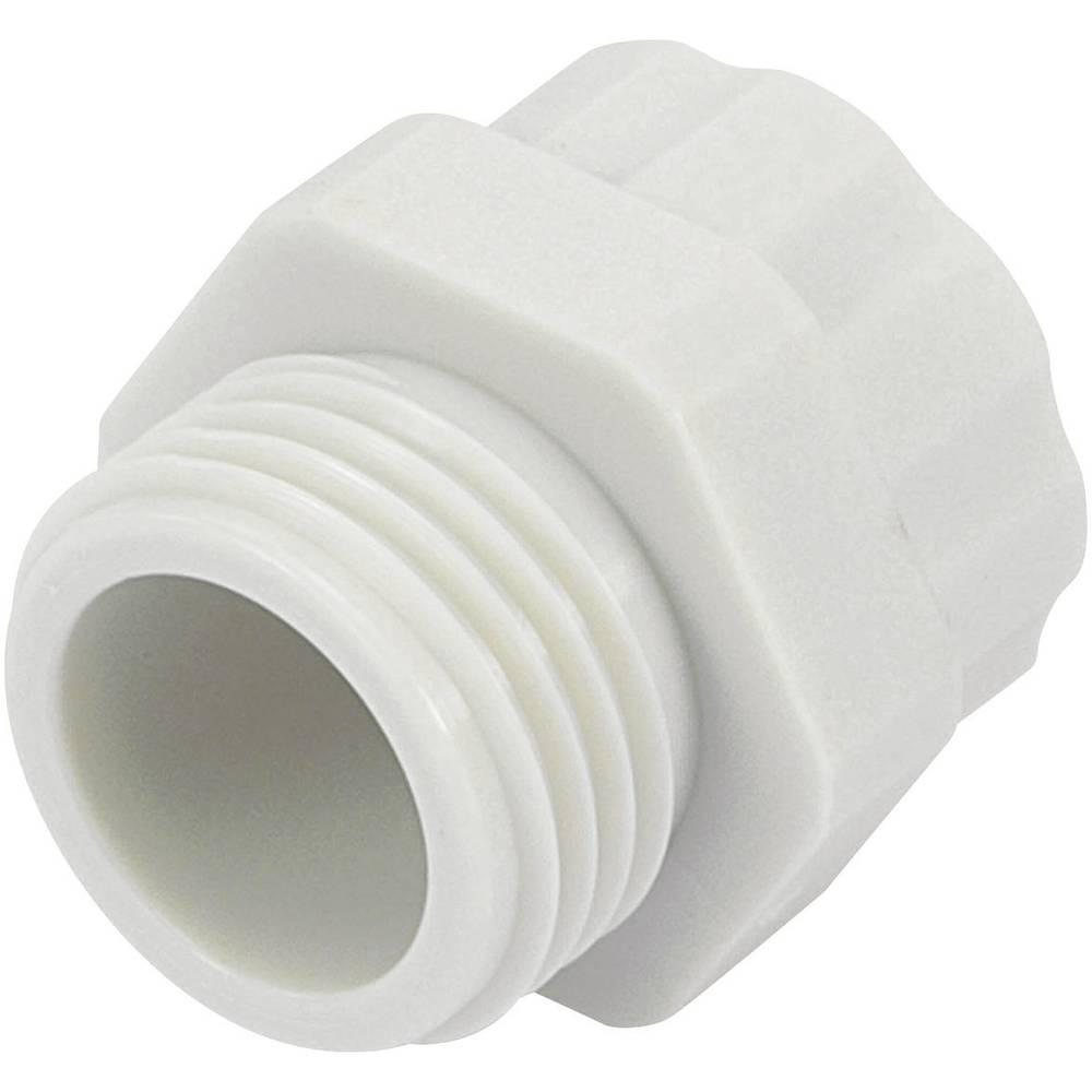 Adapter za kabelsku uvodnicu PG21 M25, poliamid svijetlo sive boje (RAL 7035) KSS PR2125GY4 1 kom