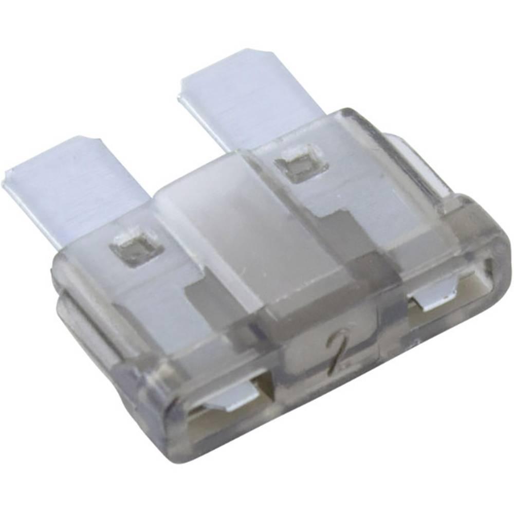 Avtomobilska standardna ploščata varovalka Conrad za avto/industrijo, siva, vtična, 32V, 2A