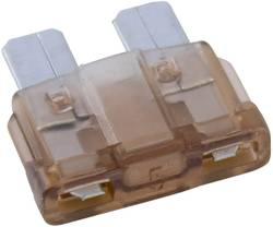 Conrad-Standardni pljosnati osigurač, automobilski/industrijski, bež, utični, 32V, 5A