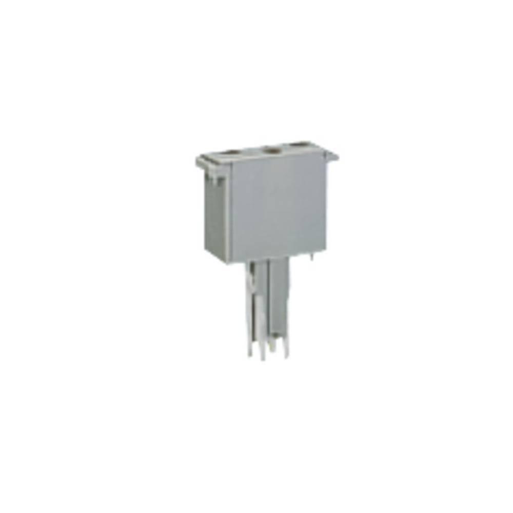 Empty component plug housing WAGO 50 stk