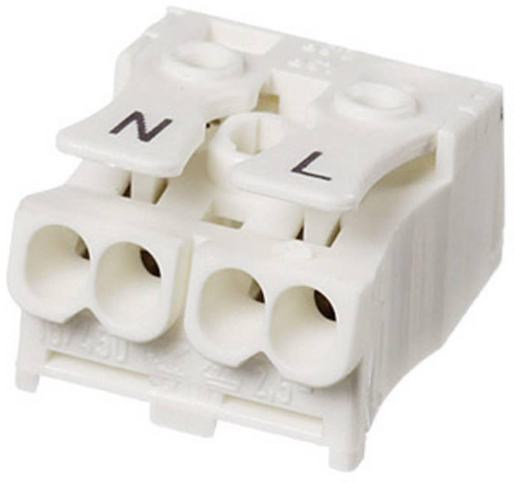 Lestenčna sponka Adels-Contact, prečni prerez: 2,5 mm2, 16 A, bela 041012