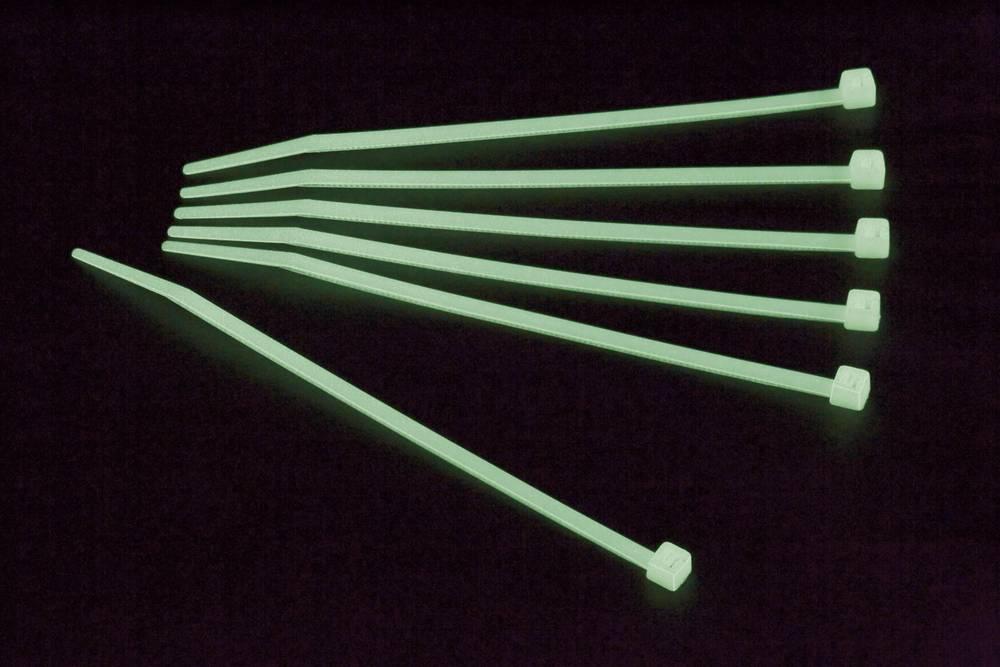 Kabelske vezice 200 mm zelene barve fosforescentne Conrad Components 546645 100 kos