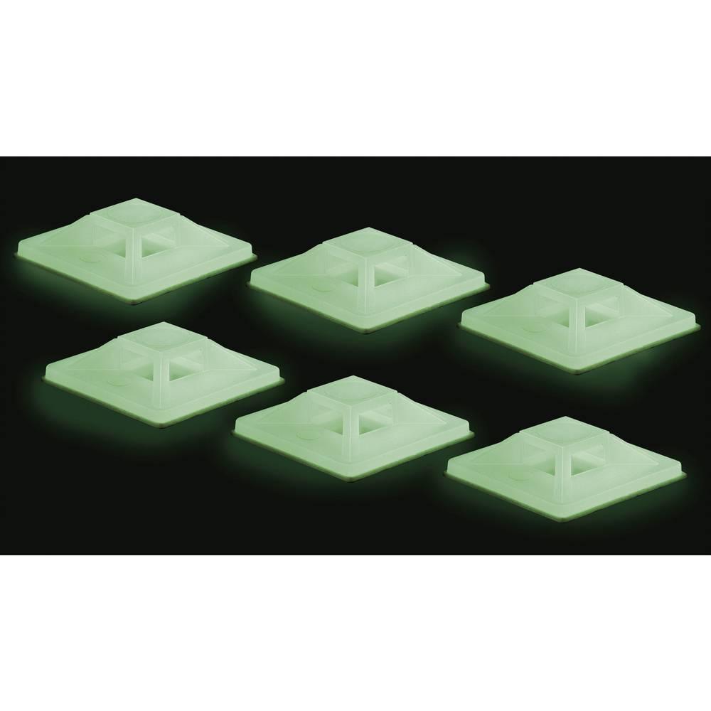 Set ljepljivih podnožja Conrad flourescentna zelena (dugo naknadno svjetlo) sadržaj: 50 kom.