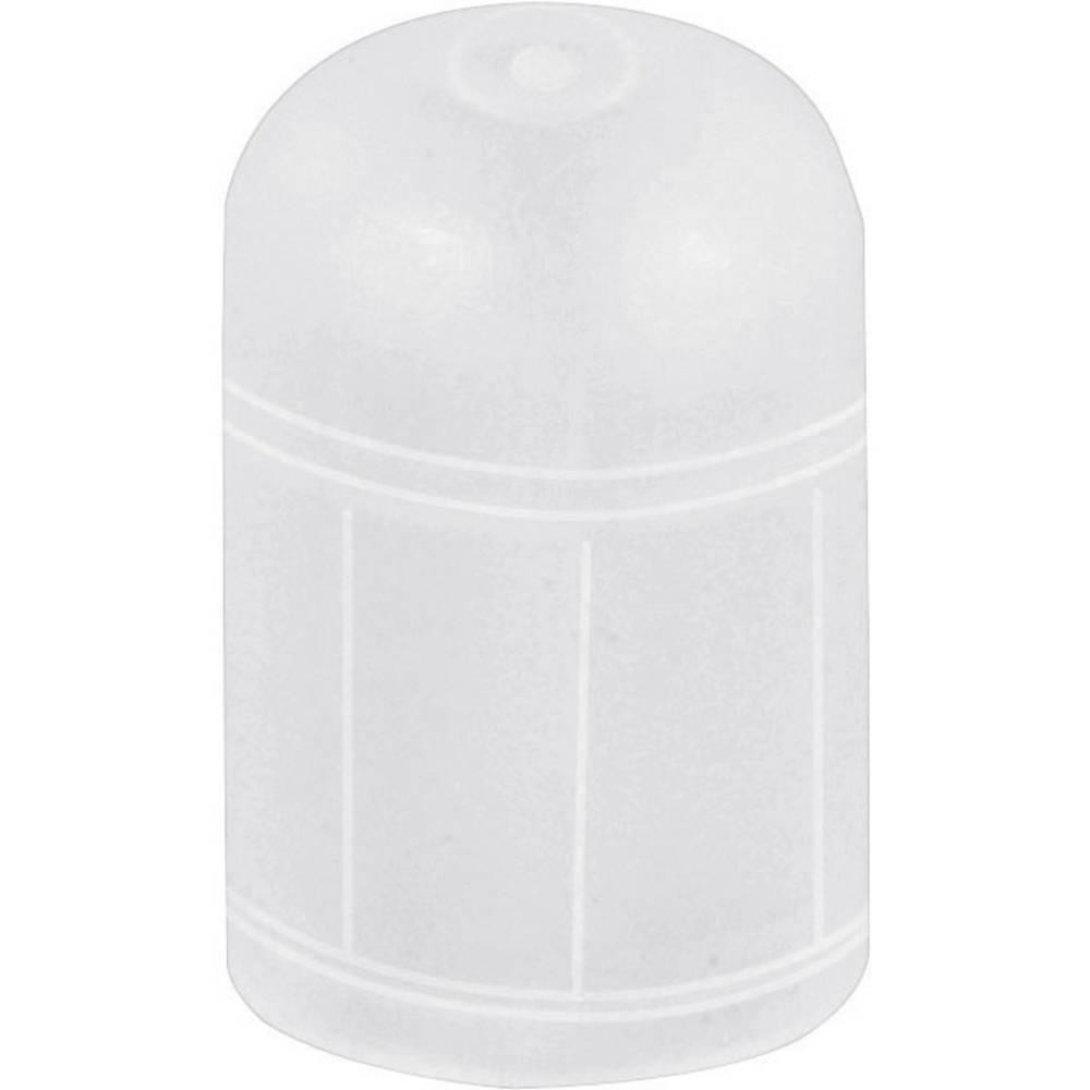 Zaščitni pokrovček premer (maks.) 5.7 mm polietilen naravne barve PB Fastener 062006000003 1 kos