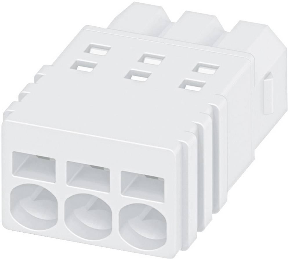 Kabel za vtično ohišje PTSM Phoenix Contact 1704858 dimenzije: 2.50 mm 1 kos