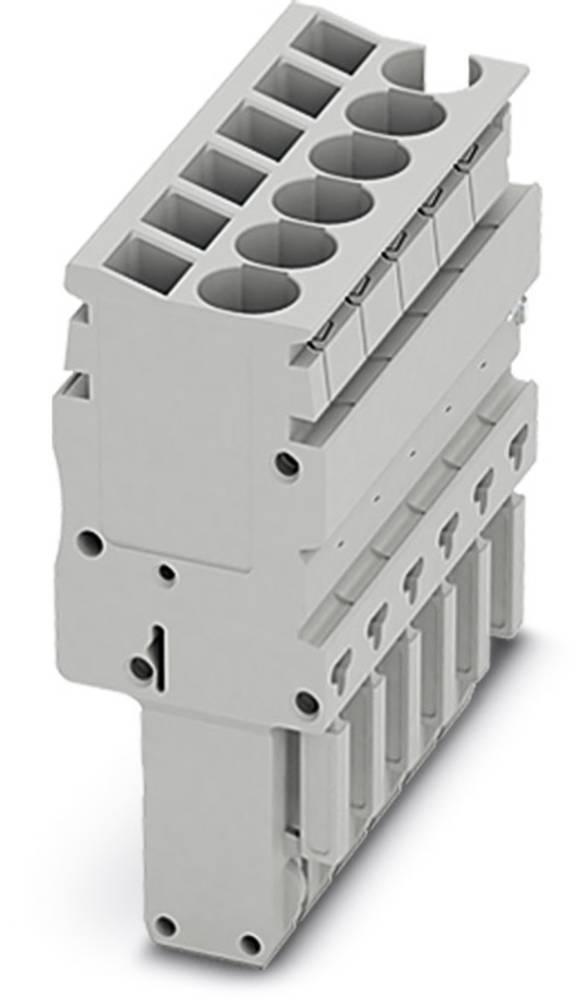 Plug SP-H 2.5 / 5 Phoenix Contact SP-H 2,5/ 5 Grå 50 stk