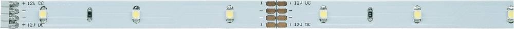 LED-trak z vtičem 12 V 50 cm toplo-bele barve Paulmann YourLED Eco 70196