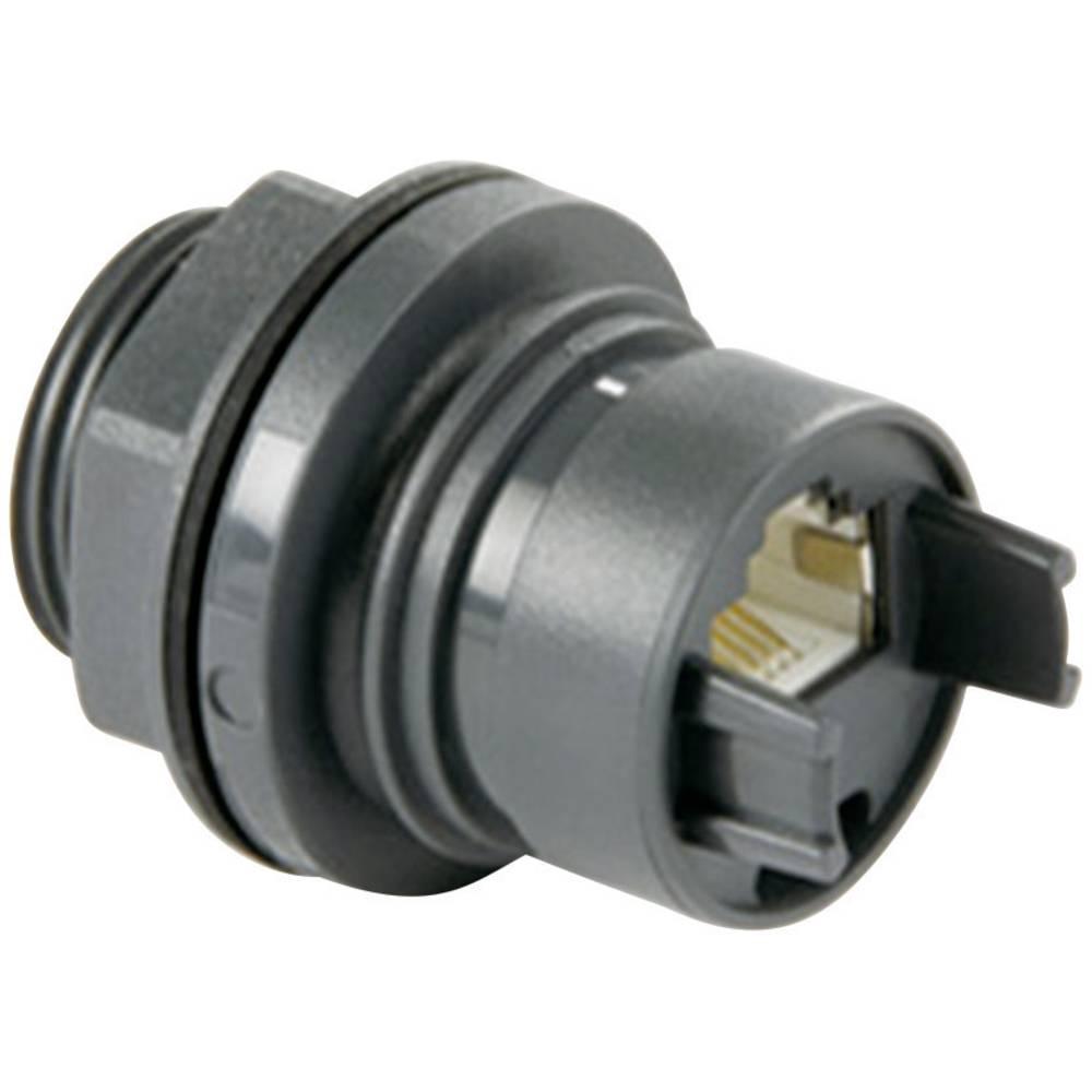 Sensor-/Aktor-datastikforbinder Bulgin PXP6033/TP 1 stk