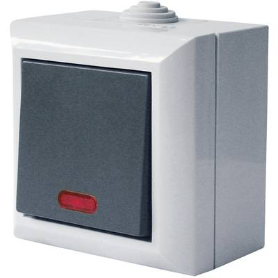 Image of GAO 9164 Wet room switch product range Circuit breaker Business-Line Grey
