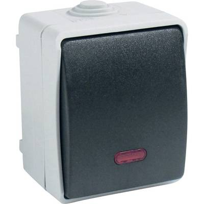 Image of GAO 9876 Wet room switch product range Control switch Standard Grey