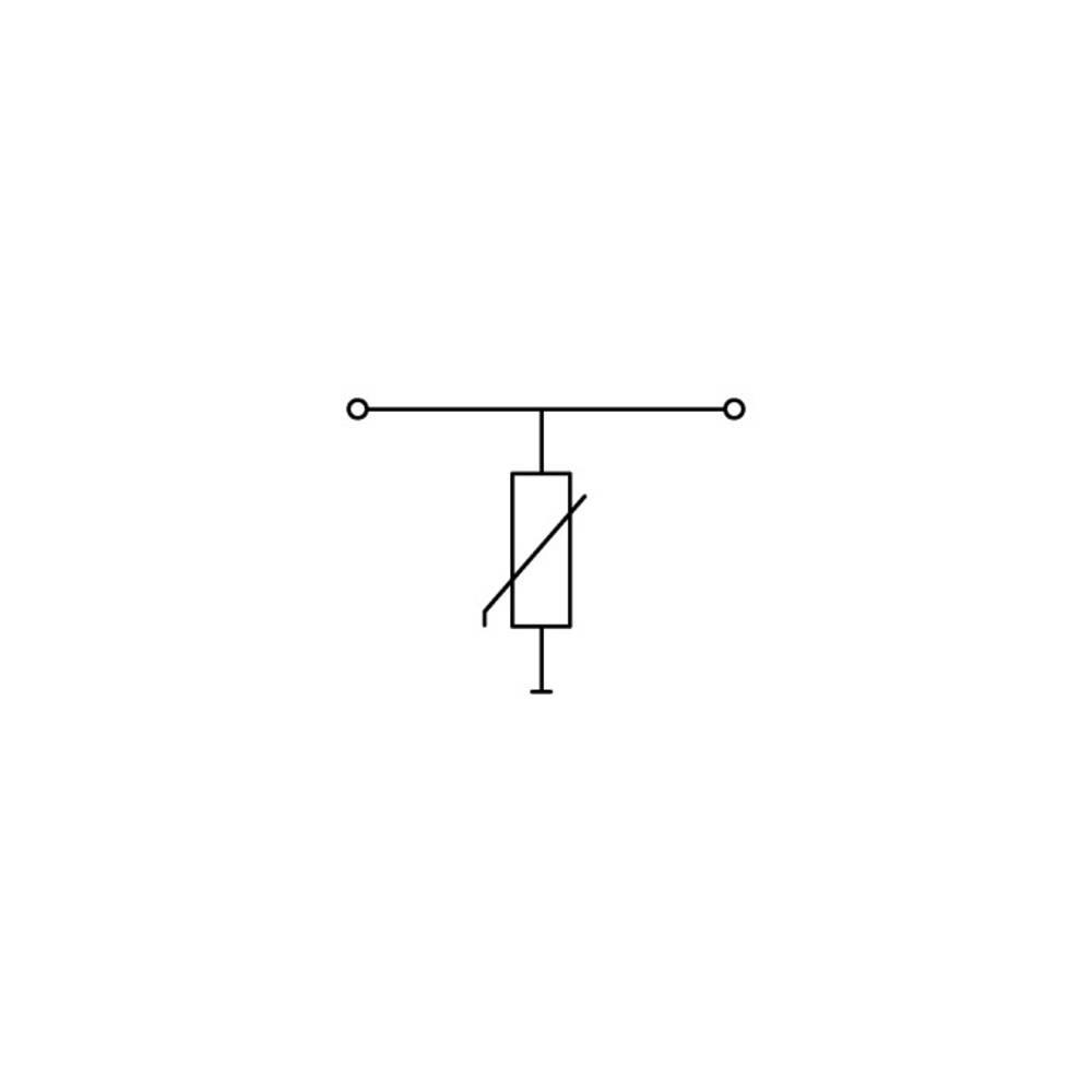 Enkelt klemme 10 mm Trækfjeder Belægning: L Grå WAGO 870-523/281-582 25 stk