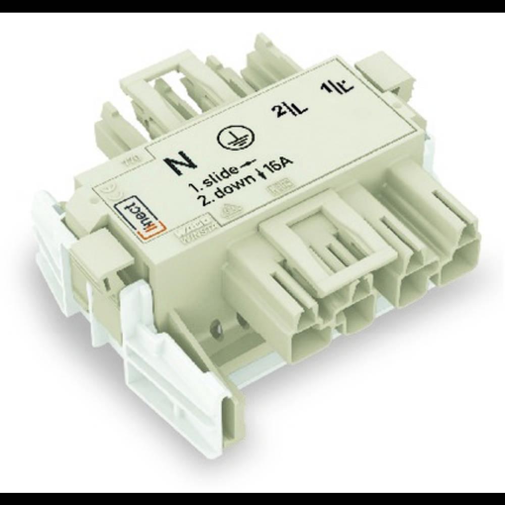Strømforsyningsadapter WAGO Samlet poltal 4 Hvid 25 stk