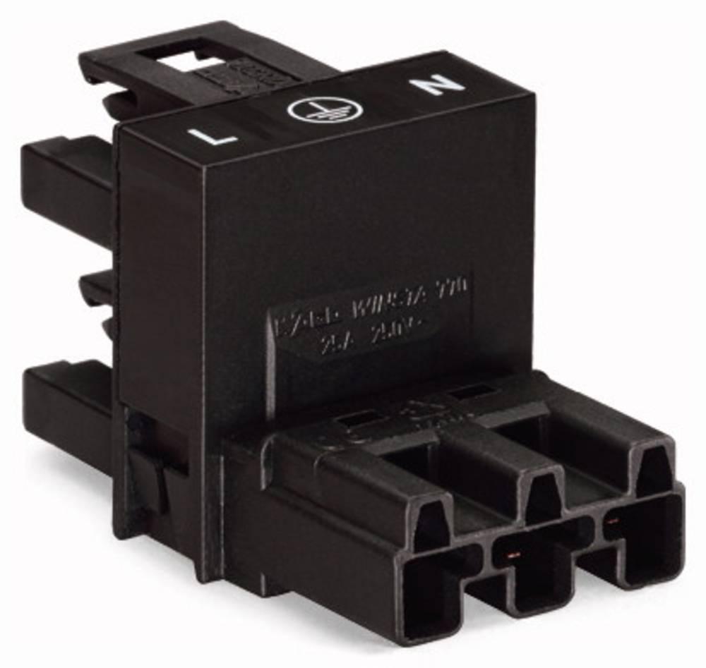 H-strømforsyningsfordeler WAGO Samlet poltal 3 Hvid 50 stk