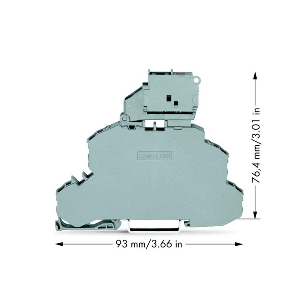 Dobbeltlags-sikringsklemme 6.20 mm Trækfjeder Grå WAGO 2002-2611/1000-541 25 stk