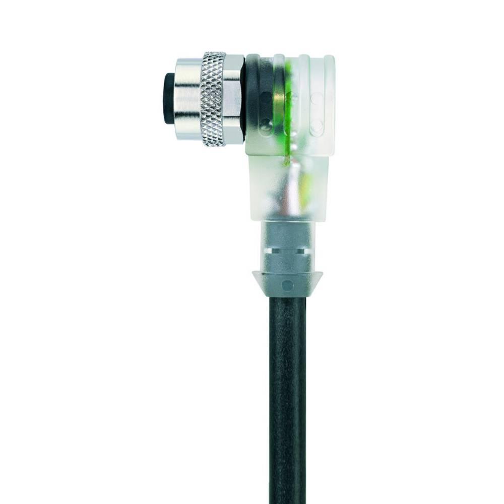 Sensor-, aktuator-stik, Escha AL-WWAK5P3-2/S370 1 stk