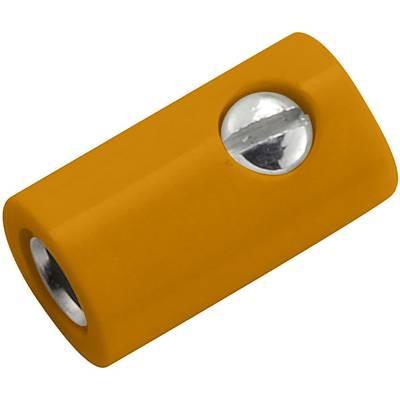 Image of Kahlert Licht Mini jack socket Socket, straight Pin diameter: 2.6 mm Orange 1 pc(s)