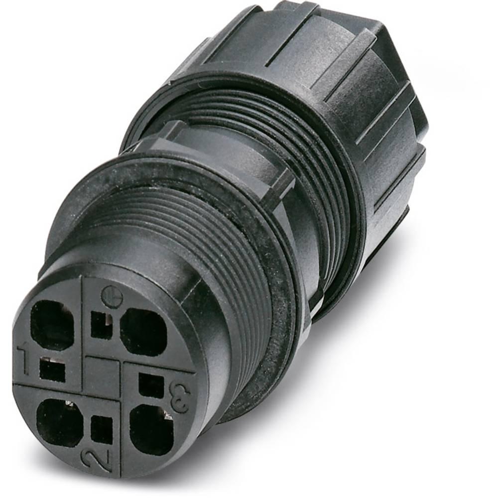 QPD W 3PE2,5 6-10 M25 DT BK - Wall bøsning Phoenix Contact QPD W 3PE2,5 6-10 M25 DT BK 1 stk