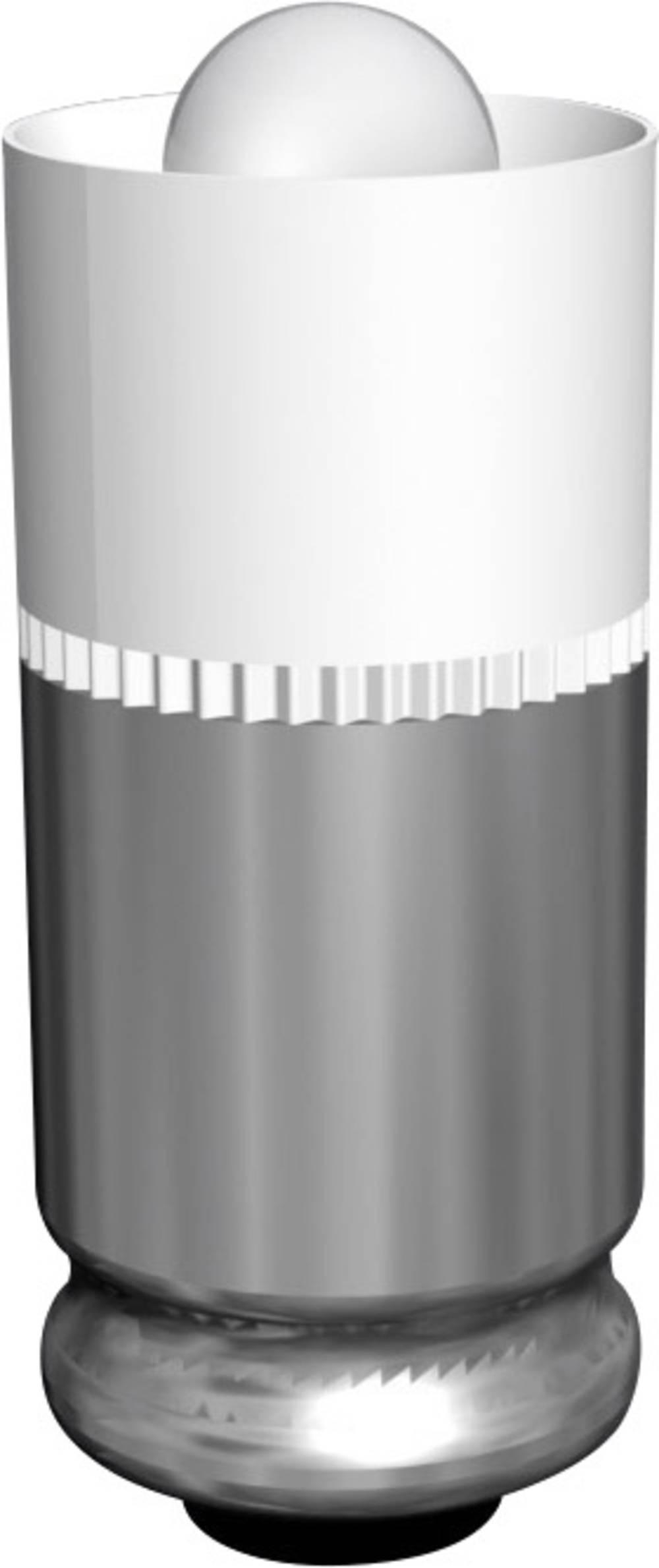 LED žarnica T1 3/4 MG bela 24 V/DC 2000 mcd 428 mlm Signal Construct MEDG5764