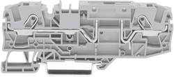 WAGO 2006-1661 2 Cord Base Terminal 0.2 - 6 mm² Grey