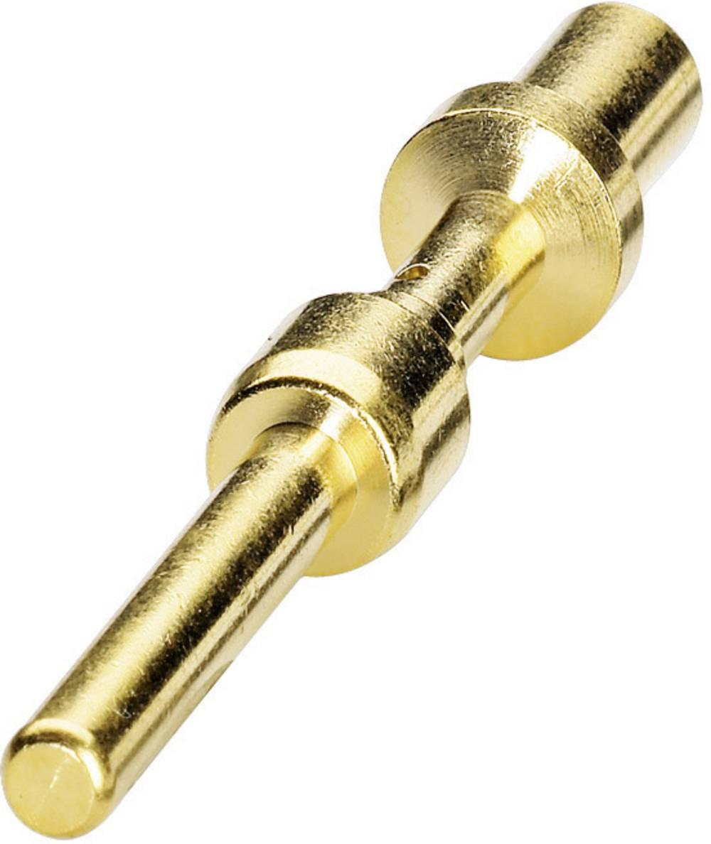 Kontakt za stiskanje Coninvers SM-36KP006, za serijo P70, 2,5-4 mm2, zlat, vsebina: 1 kos 1605750