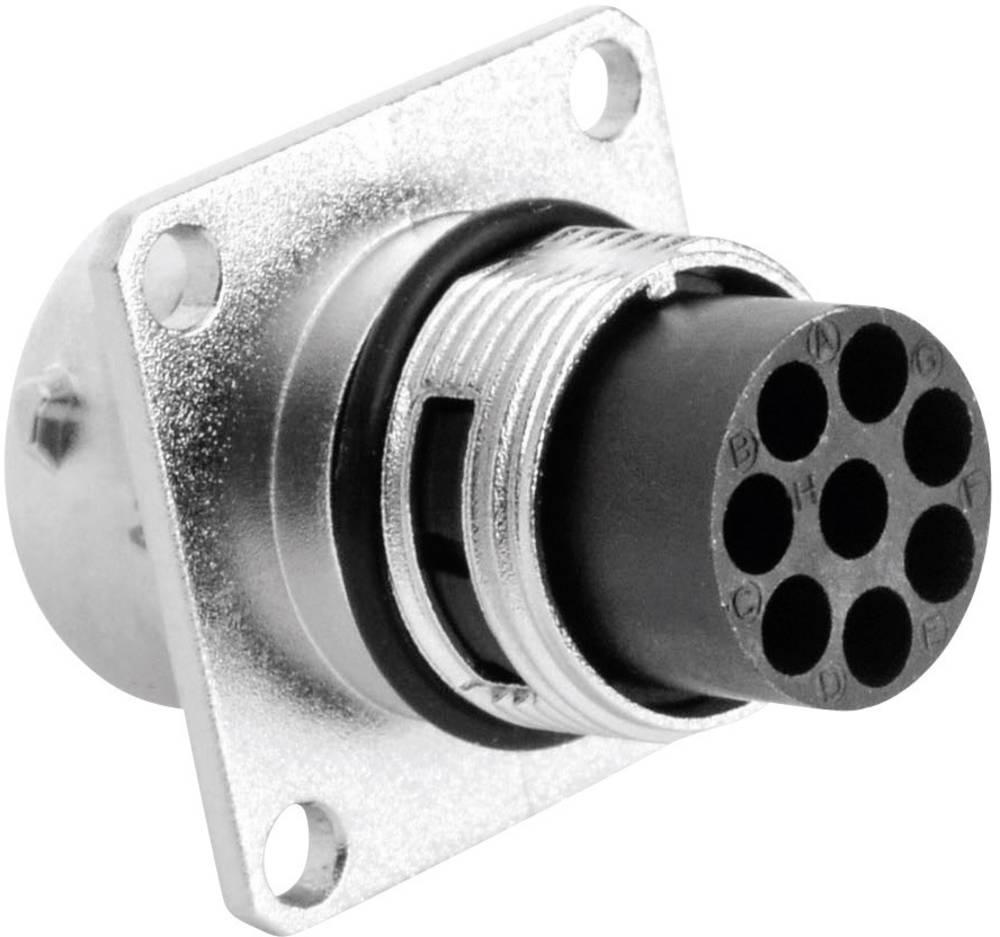 Moški konektor za naprave Amphenol Tuchel RT0012-8PNH, nazivni tok: 13 A, poli: 8