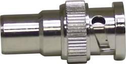 BNC-adapter BNC-stik - Coax-stik Conrad Components 1 stk