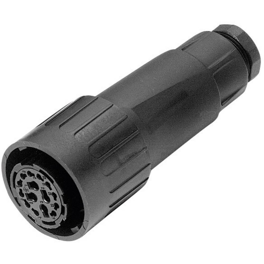 Ženski konektor za kabel Amphenol C016 10E014 002 1, 11 x 6A, 4 x 16 A, poli: 14 + PE