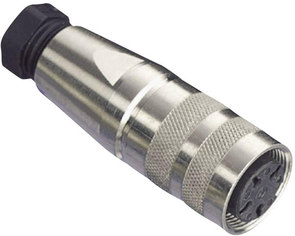 Okrogli vtični konektor, C091/D poli: 8 DIN kabelska vtičnica 5 A C091 31D008 100 2 Amphenol 1 kos