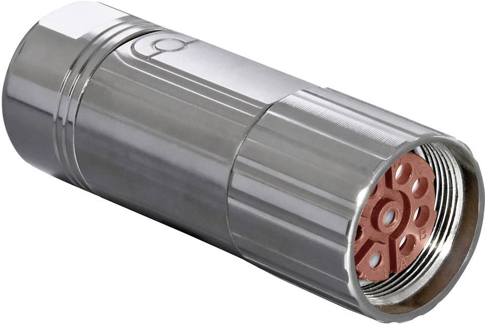 Industristikforbindelse M23 serie 923 - effektstikforbindelse Intercontec BSTA078FR05420235C00 1 stk