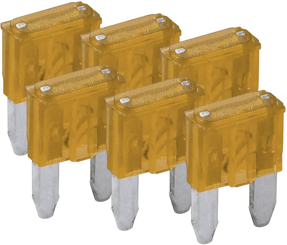 Mini fladsikring 5 A Beige FixPoint SORTIMENT 1027-5A KFZM-Sicherung 6 tlg. 20387 6 stk