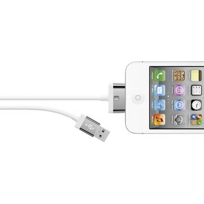 Compare cheap offers & prices of Belkin 2 Metres 30-Pin Charge and Sync Cable iPhone 4/4S iPad 2 3 4 White manufactured by Belkin