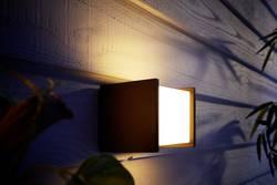 Philips lighting hue applique murale extérieure led fuzo led