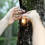 Lampe LED Luci Solar String
