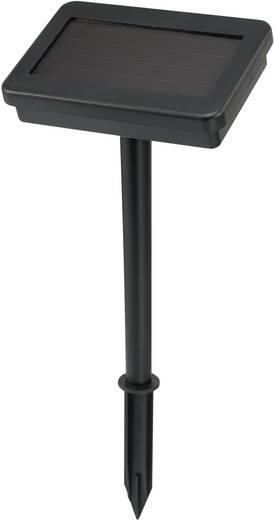 guirlande guinguette ext rieure multicolore renkforce 13 c002 sl led int gr e. Black Bedroom Furniture Sets. Home Design Ideas