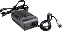 Chargeur pour accus au plomb CTE CTE4C12030 12 V 1 pc(s)